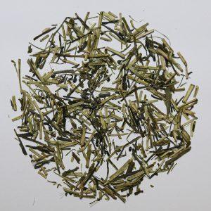 Camellia Te grøn te Kukicha økologisk