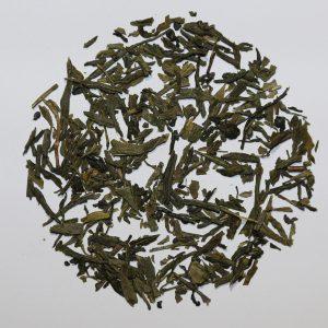Camellia Te Grøn te Sencha økologisk