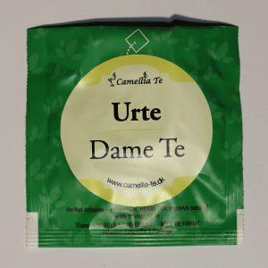 Camellia Te 1895 Urte Te Dame Te